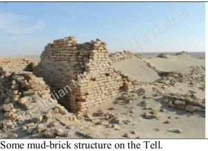 mud - bricks